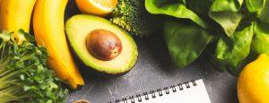 elisa rocks Diet Nutrition Plan 300x115 - elisa-rocks-Diet-Nutrition-Plan